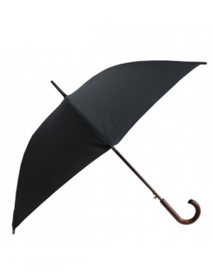 Guarda-chuva preto nobreza