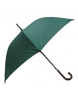 Guarda-chuva verde esperança